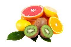 套柑橘水果 免版税库存图片