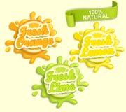 套柠檬,桔子,石灰juece标签飞溅 免版税库存图片
