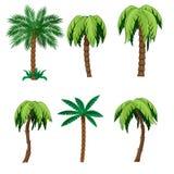 套棕榈树 库存照片