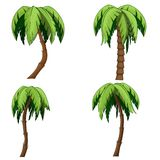 套棕榈树 免版税图库摄影