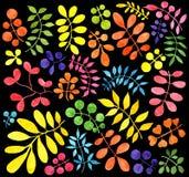 套植物,花装饰分支  额嘴装饰飞行例证图象其纸部分燕子水彩 库存图片