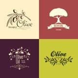 套橄榄色的标签和商标设计 免版税库存照片