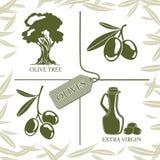 套橄榄色的标签的四个标志 皇族释放例证
