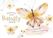 套水彩boho蝴蝶 葡萄酒夏天被隔绝的春天艺术 水彩例证 设计喜帖 库存例证