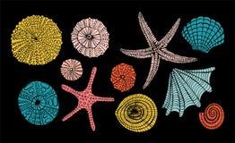 套海洋题材 截去的查出的路径海运轰击白色 不同的贝壳,在白色背景的海星 例证剪影样式 皇族释放例证