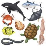 套海洋动物例证热带字符野生生物海洋水生鱼的不同的类型 免版税库存图片