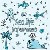 套海洋动物和元素 逗人喜爱的水生物 免版税图库摄影