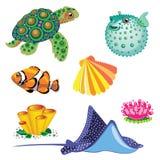 套海洋动物 库存照片