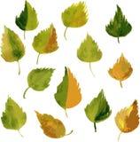 套由叶子的剪影在水彩 免版税库存图片