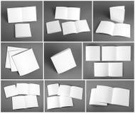 套空白的杂志,编目,小册子,杂志,书 皇族释放例证