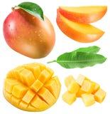 套芒果果子、芒果切片和叶子 ea的裁减路线 免版税库存图片