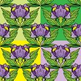 套花饰-无缝与虹膜开花 免版税库存照片