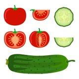 套菜-蕃茄和黄瓜在平的样式 免版税库存照片