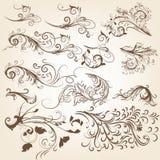 套葡萄酒传染媒介设计的漩涡装饰品 免版税图库摄影