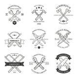 套葡萄酒木匠业手工具,修理公司,标签和 免版税库存图片