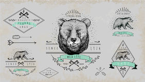 套葡萄酒熊商标 T恤杉的设计 免版税图库摄影