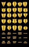 套葡萄酒设计元素金黄盾和金子advertis 免版税库存照片