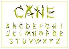 套装饰字母表芦苇 背景查出的白色 图库摄影