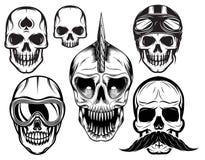套设计的六块不同头骨 免版税图库摄影