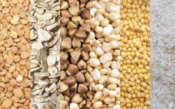 套谷物剥落分裂了豌豆,荞麦,五谷,麦子谷物,向日葵种子 免版税图库摄影