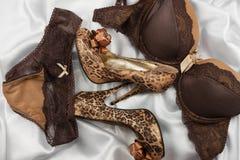 套迷人的时髦的棕色性感的鞋带女用贴身内衣裤,妇女在白色丝绸背景的豹子鞋子 免版税图库摄影