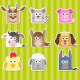 套逗人喜爱的动画片正方形家动物贴纸 库存图片
