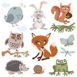 套逗人喜爱的森林动物动画片传染媒介 免版税库存照片