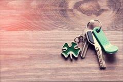 套金属和与一棵钥匙圈型三叶草的磁性钥匙生叶以在黑暗的木背景的绿色 定调子 免版税图库摄影