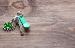 套金属和与一棵钥匙圈型三叶草的磁性钥匙生叶以在黑暗的木背景的绿色 免版税库存图片