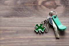 套金属和与一棵钥匙圈型三叶草的磁性钥匙生叶以在黑暗的木背景的绿色 免版税图库摄影