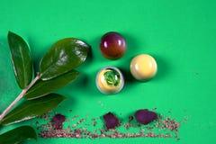 套顶视图美丽和可口巧克力甜点装饰用被分类的巧克力捏碎 免版税库存照片