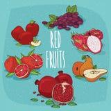 套食品红色果子 免版税库存照片