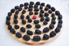 套黑莓和一个莓在圆的木盘子 库存照片