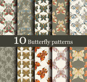 套10个无缝的蝴蝶图案 图库摄影