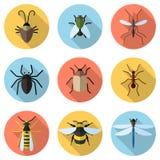 套9个昆虫象 图库摄影