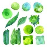 套绿叶颜色水彩污点  免版税图库摄影