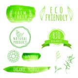套水彩有机食品标签 Eco产品 免版税图库摄影
