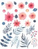 套水彩红色精美花和蓝色叶子 库存图片