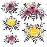 套水彩黑暗的花束用伯根地和黄色花 免版税库存照片
