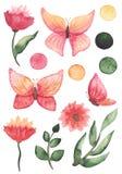 套水彩蝴蝶、花、叶子和小点 库存图片