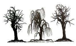 套3棵被隔绝的死亡树 免版税库存图片
