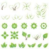 套绿色叶子和花设计元素 免版税库存照片