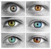 套6只五颜六色的不同的开放眼睛/巨大规模 库存照片