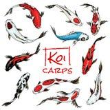 套Koi鲤鱼,日本鱼 色的韩国动物 被刻记的手拉的线艺术葡萄酒纹身花刺单色剪影 库存例证