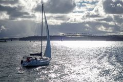 奥克兰从海和帆船,新西兰的桥梁视图 图库摄影