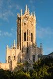 奥克兰大学钟楼特写镜头  库存图片
