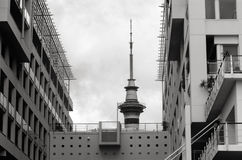 奥克兰天空塔顶的新西兰 图库摄影