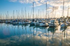 奥克兰小船反射在小游艇船坞 免版税图库摄影