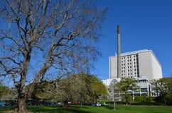奥克兰市医院-新西兰 库存照片