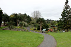 奥克兰植物园 库存图片